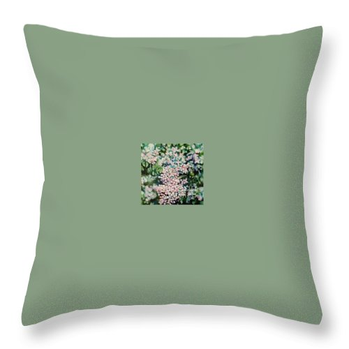 Lilacs Throw Pillow featuring the painting Dwarf Korean Lilac by Karen Sloan