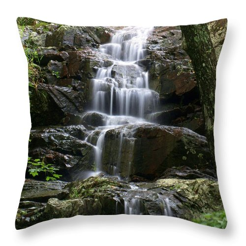 Waterfalls Throw Pillow featuring the photograph E Falls by Marty Koch