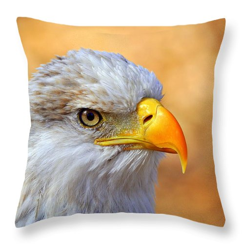 Eagle Throw Pillow featuring the photograph Eagle 7 by Marty Koch
