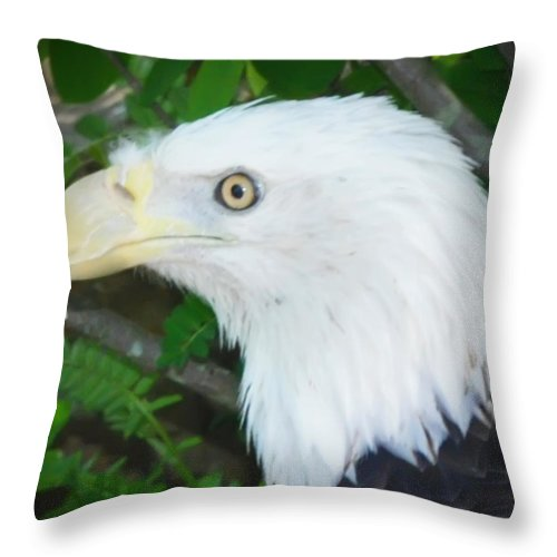 American Throw Pillow featuring the photograph Eagle Eye by Bill Cannon