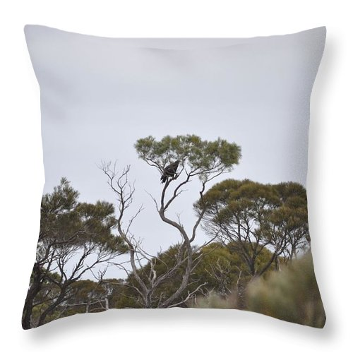 Landscape Throw Pillow featuring the painting Eagle On The Nullarbor by Richard Benson