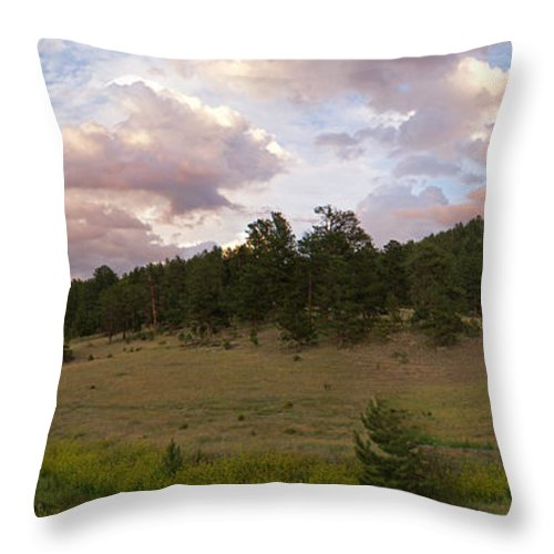 Eagle Roick Throw Pillow featuring the photograph Eagle Rock Estes Park Colorado by Heather Coen