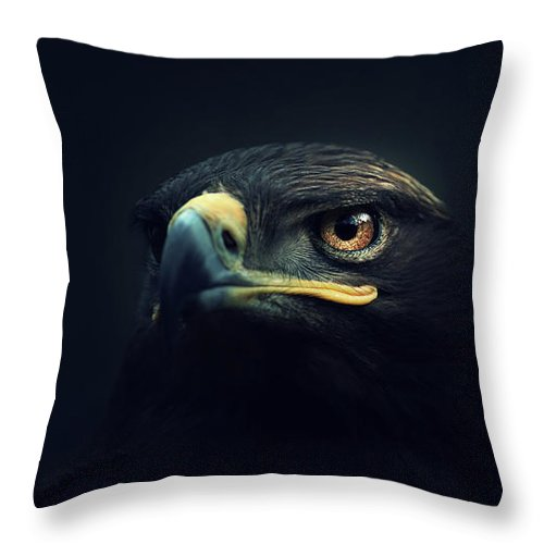 Animal Throw Pillow featuring the photograph Eagle by Zoltan Toth