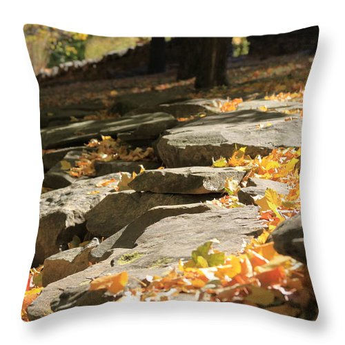 Autumn Throw Pillow featuring the photograph Early Autumn by Andrea Lynch