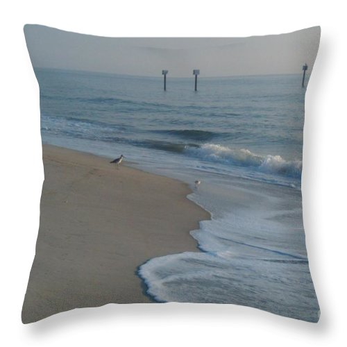 Morning Throw Pillow featuring the photograph Early Bird by Bev Veals