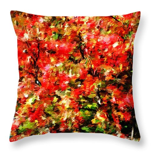 Abstract Digital Photo Throw Pillow featuring the photograph Early Color Painting by David Lane