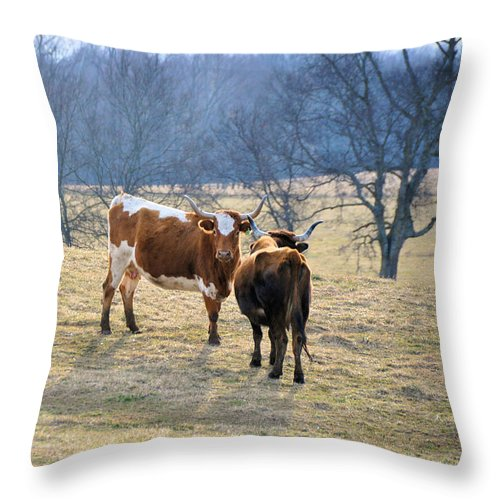 Landscapes Throw Pillow featuring the photograph Early March by Jan Amiss Photography
