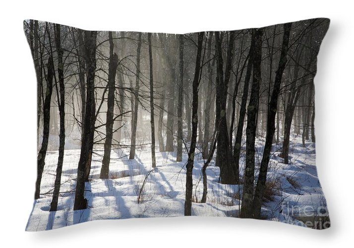 Fog Throw Pillow featuring the photograph Early Morning Fog In A New Hampshire Forest by Erin Paul Donovan