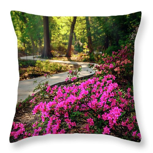Tamyra Throw Pillow featuring the photograph Early Morning In Honor Heights Park by Tamyra Ayles