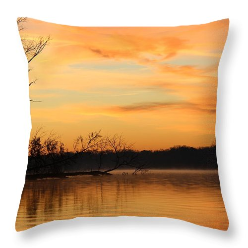 Sunrise Throw Pillow featuring the photograph Early Morning by Scott Carr