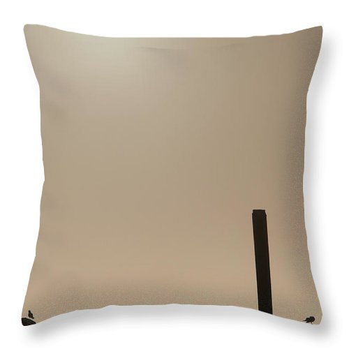Animals Throw Pillow featuring the photograph Early Morning Silhouette  by Chad Davis
