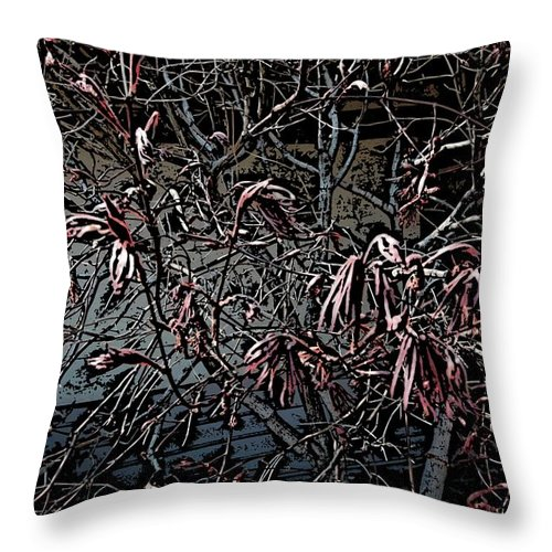 Digital Photography Throw Pillow featuring the digital art Early Spring Abstract by David Lane