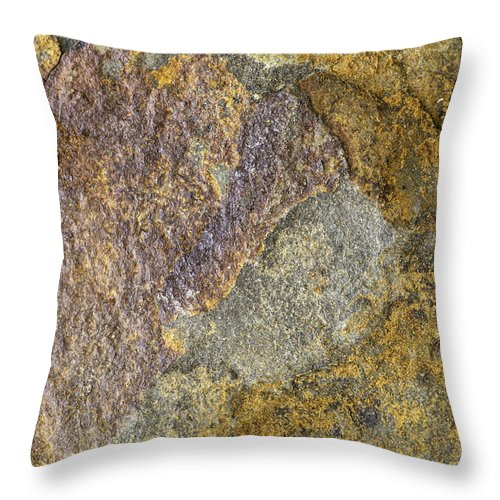 Macro Throw Pillow featuring the photograph Earth Portrait 011 by David Waldrop