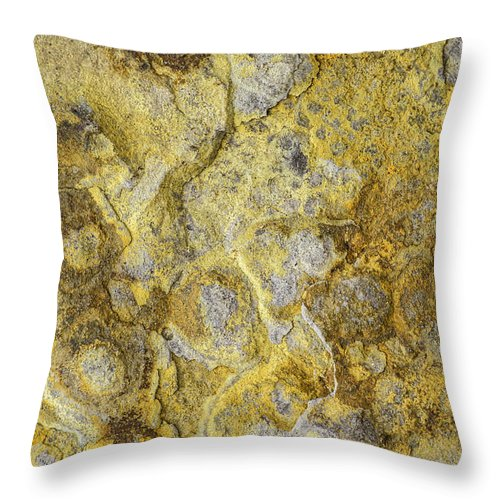 Macro Throw Pillow featuring the photograph Earth Portrait 013 by David Waldrop