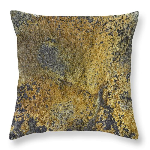 Macro Throw Pillow featuring the photograph Earth Portrait 014 by David Waldrop
