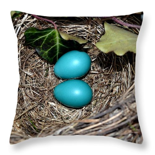 Egg Throw Pillow featuring the photograph Easter Eggs by Michelle Calkins