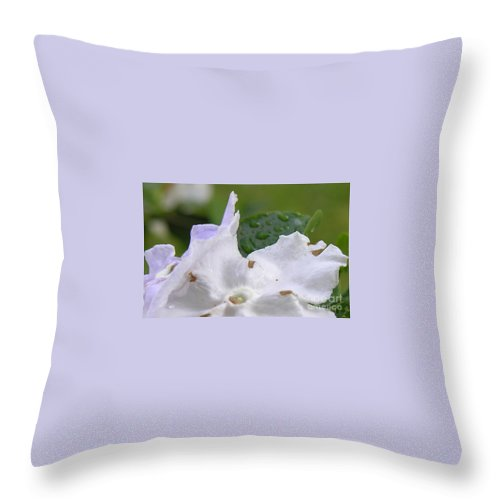 Flower Throw Pillow featuring the photograph Easter Surprise by Richard Rizzo