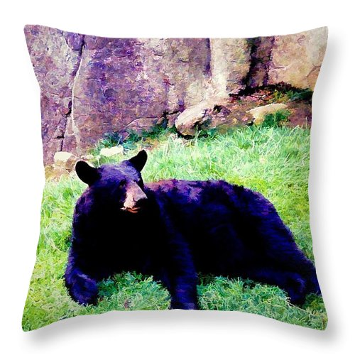 Animals Throw Pillow featuring the photograph Eastern Black Bear by Jan Amiss Photography