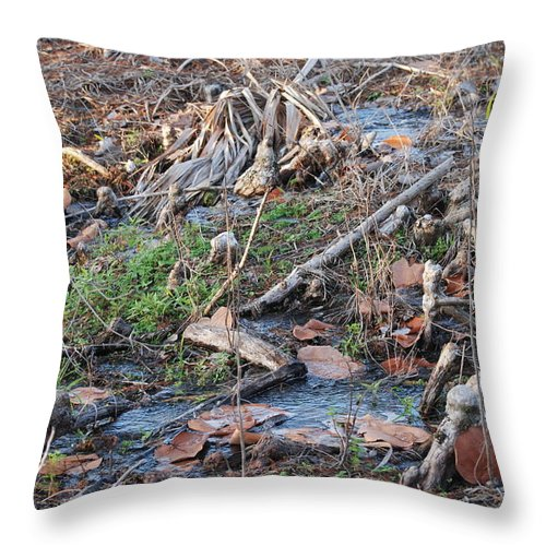 River Throw Pillow featuring the photograph Ebb And Flow by Rob Hans
