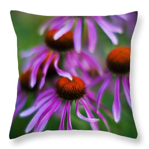 Echinacea Throw Pillow featuring the photograph Echinacea Crowd by Mike Reid