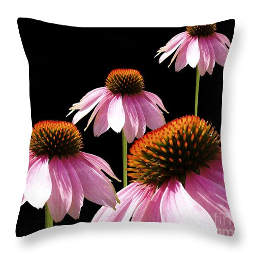 Pink Throw Pillow featuring the digital art Echinacea In Half by Cathy Beharriell