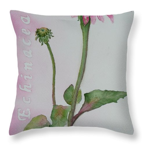 Flower Throw Pillow featuring the painting Echinacea by Ruth Kamenev
