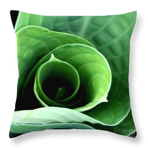 Hosta Throw Pillow featuring the photograph Echo II by Valerie Fuqua