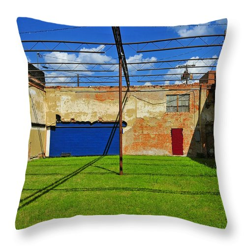 Skiphunt Throw Pillow featuring the photograph Eco-store by Skip Hunt