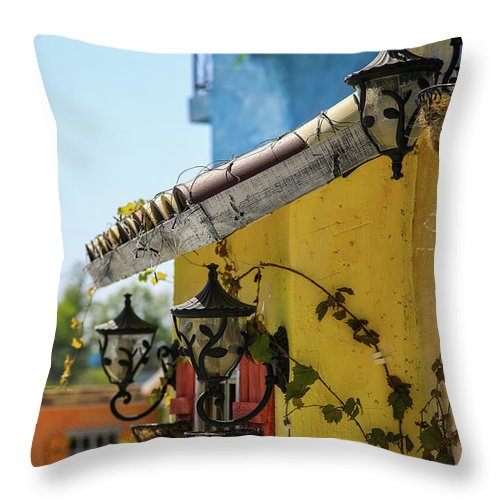 Spring Throw Pillow featuring the photograph Edge Of House by Hyuntae Kim