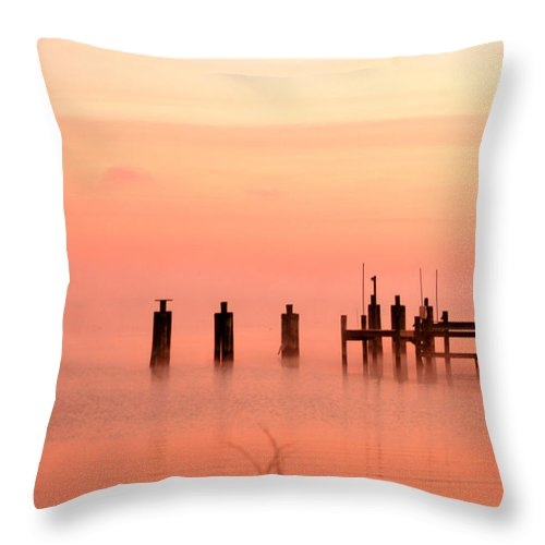 Clay Throw Pillow featuring the photograph Eery Morn by Clayton Bruster