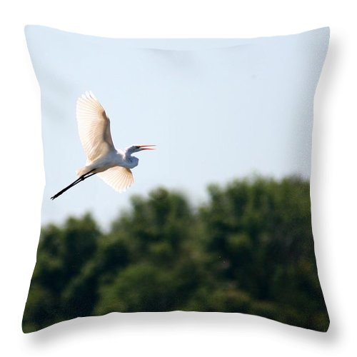 Bird Throw Pillow featuring the photograph Egret In Flight by David Dunham