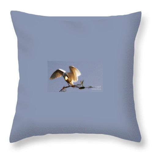 Egret Throw Pillow featuring the photograph Egrets Landing by Linda Shafer