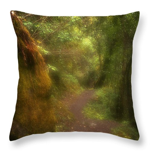 Path Throw Pillow featuring the photograph El Camino by Patrick Klauss
