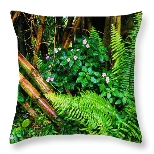 Puerto Rico Throw Pillow featuring the photograph El Yunque National Forest Ferns Impatiens Bamboo by Thomas R Fletcher