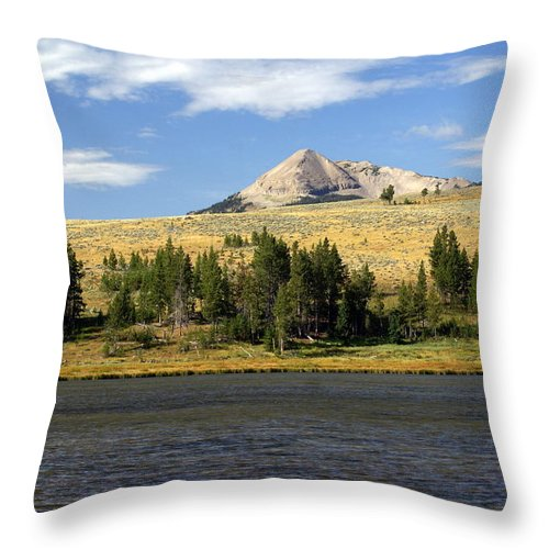 Yellowstone National Park Throw Pillow featuring the photograph Electric Peak 1 by Marty Koch