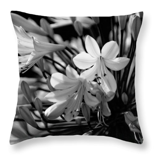 Flower Throw Pillow featuring the photograph Elegance - Bw by Linda Shafer