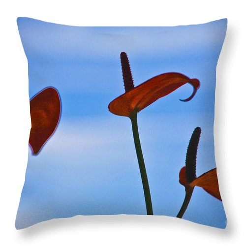 Three Throw Pillow featuring the photograph Elegance-2 by Casper Cammeraat