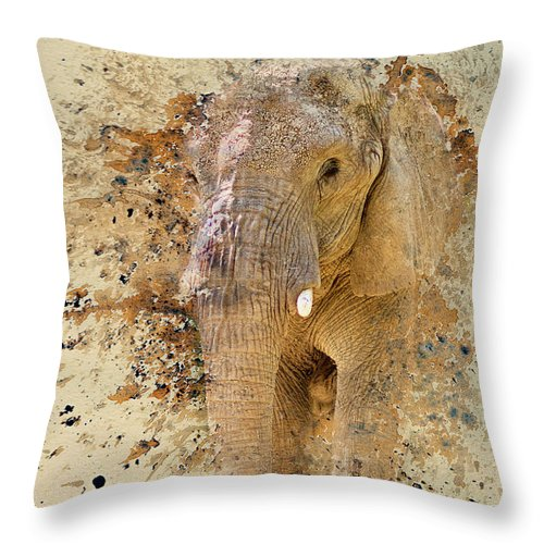 Elephant Throw Pillow featuring the photograph Elephant Color Splash by Pam Holdsworth