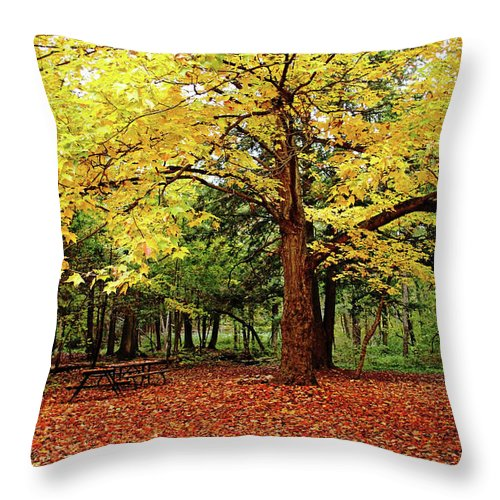 Elora Throw Pillow featuring the photograph Elora Gorge Campsite In Fall by Debbie Oppermann