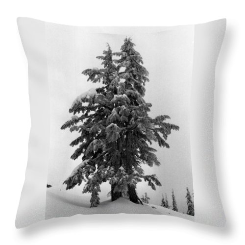 Snow Throw Pillow featuring the photograph Embrace by Lyle Crump