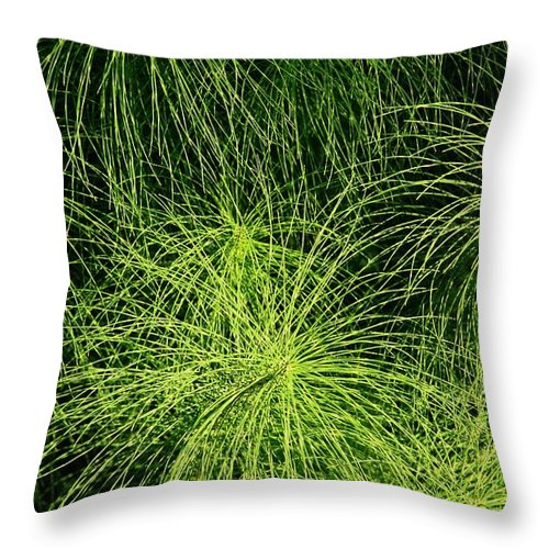 Green Throw Pillow featuring the photograph Emerald Explosion by Winston Rockwell
