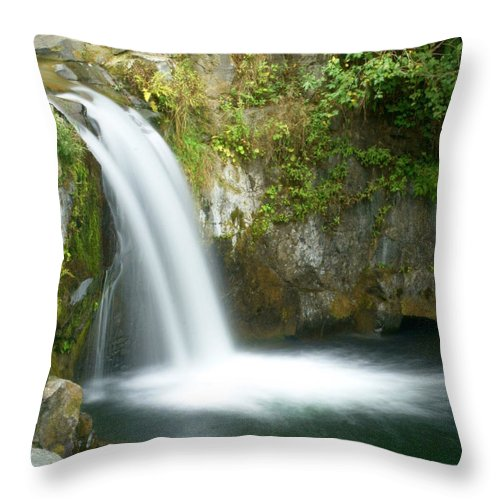 Waterfall Throw Pillow featuring the photograph Emerald Falls by Marty Koch
