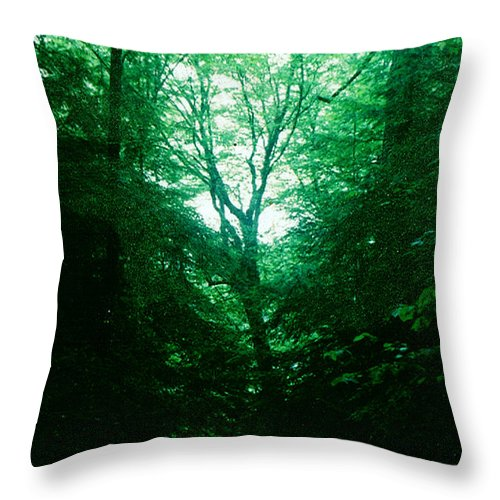 Emerald Throw Pillow featuring the photograph Emerald Glade by Seth Weaver