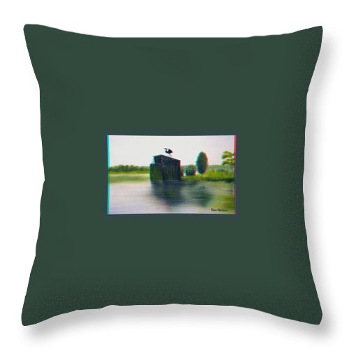 3d Throw Pillow featuring the photograph Empty Blind - Use Red-cyan 3d Glasses by Brian Wallace