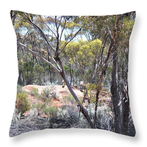 Birds Throw Pillow featuring the painting Emus by Richard Benson