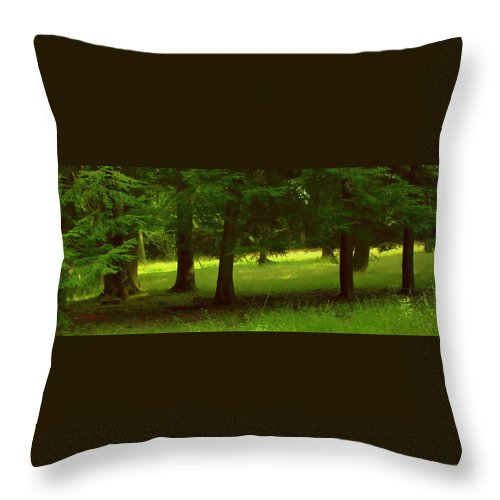 Nature Throw Pillow featuring the photograph Enchanted Forest by Linda Sannuti