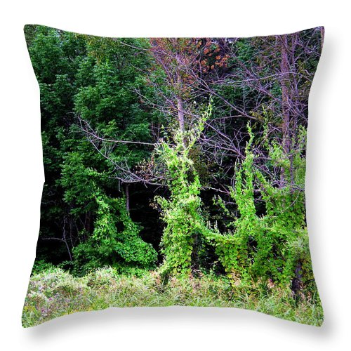 Pine Falls Manitoba Vines Landscape Throw Pillow featuring the photograph Enchanted by Joanne Smoley