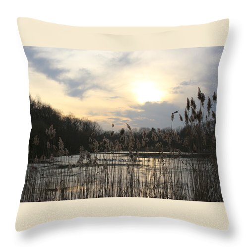 Winter Throw Pillow featuring the photograph End Of Day At The Lake by Dora Sofia Caputo Photographic Design and Fine Art
