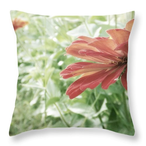 Flowers Throw Pillow featuring the photograph End Of Summer by Tatiana Gorbett