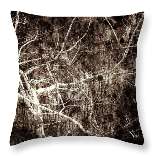 Tree Throw Pillow featuring the photograph Endless by Gaby Swanson